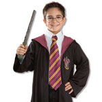 Harry Potter Fancy Dress Droitwich