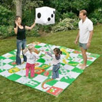 Giant Board Games Bromsgrove Snakes and Ladders